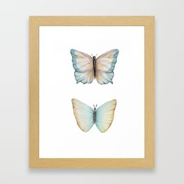 Butterfly watercolor Framed Art Print