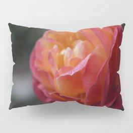 Vintage Rose Pillow Sham