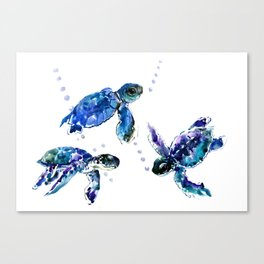 Three Sea Turtles, Marine Blue Aquatic design Canvas Print