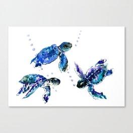 Three Sea Turtles, Marine Blue Aquatic design Canvas Print