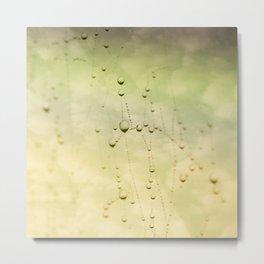 Sky Waterdrops Metal Print