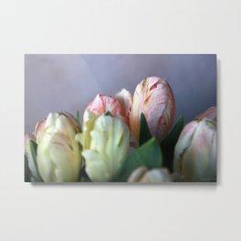 tulips #8 Metal Print