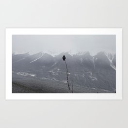 Lonely Crow In Mountains Art Print