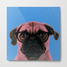 Geek Pug in Blue Background Metal Print
