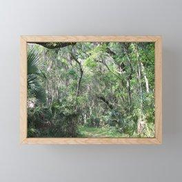Hiking in Florida Framed Mini Art Print