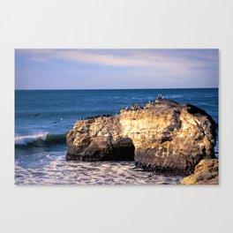 Natural Bridges, Santa Cruz Canvas Print