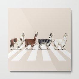Llama The Abbey Road #2 Metal Print