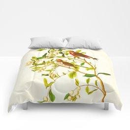 Lesser Red-Poll Bird Comforters