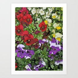 Red Purple Yellow Flowers by Daniel MacGregor Art Print