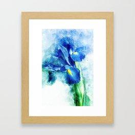Underwater Iris Framed Art Print
