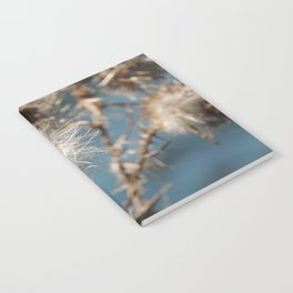 Blowing in the wind Notebook