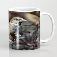 sparrow Mugs featuring Sparrow by Elaine C Manley
