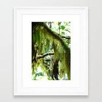moss Framed Art Prints featuring Moss by T & K Arts