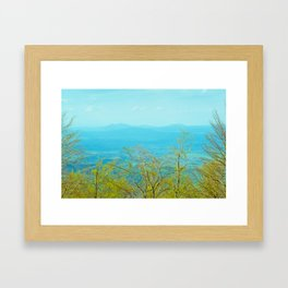 Deciduous beech forest view in spring, mountain landscape Framed Art Print
