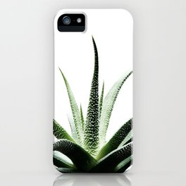 Succulents - Haworthia attenuata - Plant Lover - Botanic Specimens delivering a fresh perspective iPhone Case