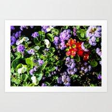 Flower Cluster Art Print