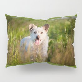 Single white stray tyke dog at the meadow Pillow Sham
