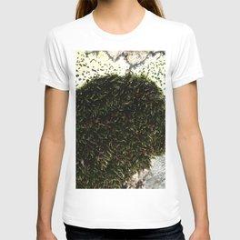 Watercolor Moss, Moss 07, with Lichen, Crestone, Colorado T-shirt