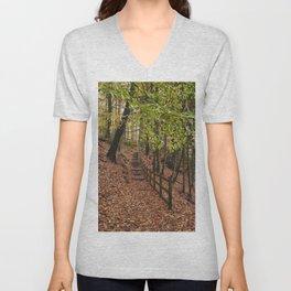Steps through autumnal woodland. Derbyshire, UK. Unisex V-Neck