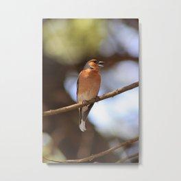 Croatian Bird Metal Print