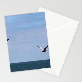 Pair of Pelicans Stationery Cards