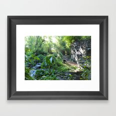 Wilderness Solitude Framed Art Print