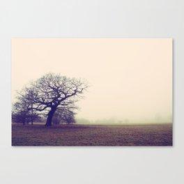 Tree in Fog Canvas Print