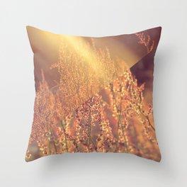 Golden Days Of Spring Throw Pillow