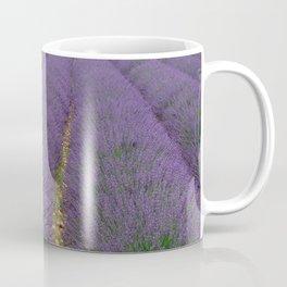 Lavander Coffee Mug