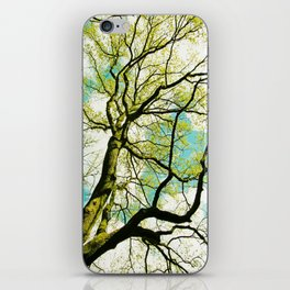 Spring Tree  iPhone Skin