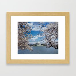 Thomas Jefferson Memorial with Cherry Blossoms  Framed Art Print