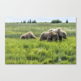 A Mother and Her Two Cubs, No. 2 Canvas Print