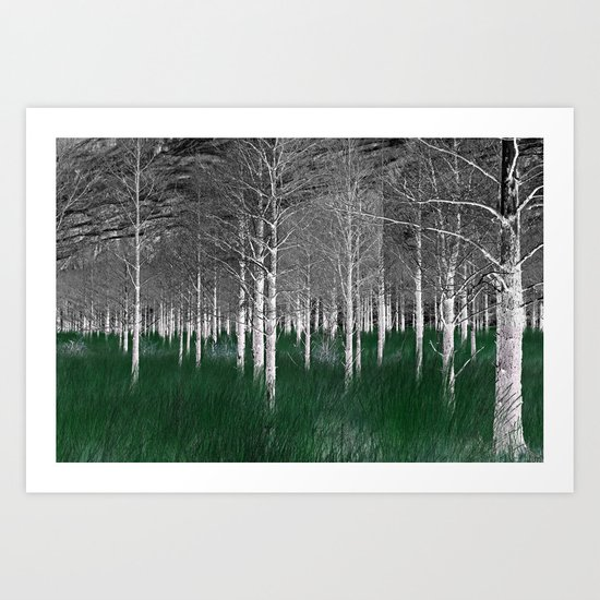 The woods are lovely, dark and deep part 1 Art Print