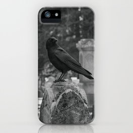 Crow In Shades Of Stone iPhone Case