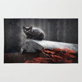 BLACK CAT II Rug