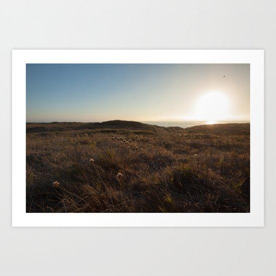 Sunset field Art Print