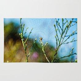 Spider in Web Rug