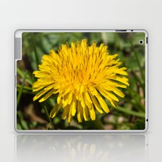 Taraxacum Laptop & iPad Skin