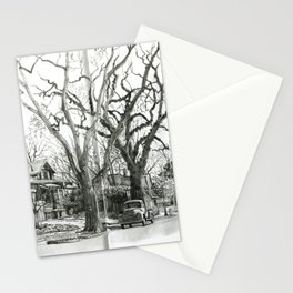 Park Hill Cottonwoods Stationery Cards