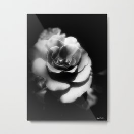 Rosas Moradas 1 Dark Metal Print