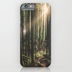 Sun in the Rainforest Slim Case iPhone 6s