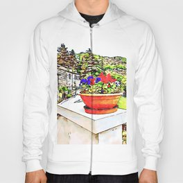 Fognano: view with flowerpot Hoody
