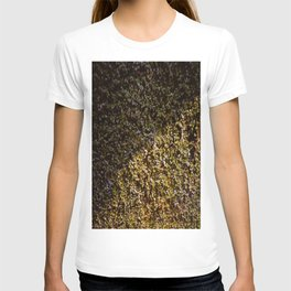 Ivy in the sun T-shirt