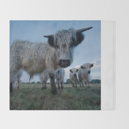 Inquisitive White High Park Cow Throw Blanket