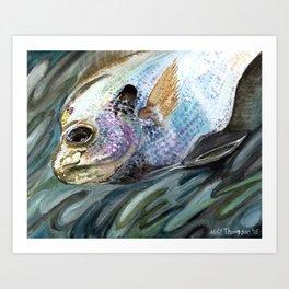 """Bluegill"" Art Print"