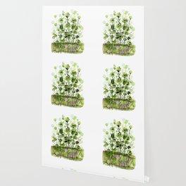 Floral Charm No.1I by Kathy Morton Stanion Wallpaper