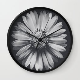 Daisy in the darkness Wall Clock