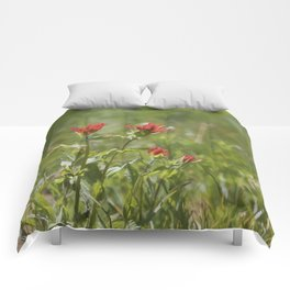 Indian Paintbrush Painterly Comforters