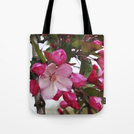 Spring blossoms - Strawberry Parfait Crabapple Tote Bag
