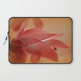 Cactus Blossom in Sunlight  Laptop Sleeve